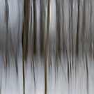 Winter Trees Abstraction by Gert Lavsen
