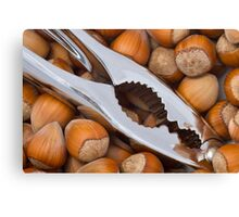 The Nut Cracker Canvas Print