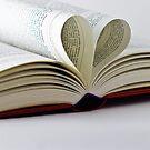 Heart Book by Gert Lavsen