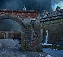 December Night by © Kira Bodensted