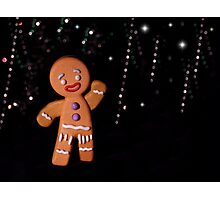 Gingy Photographic Print