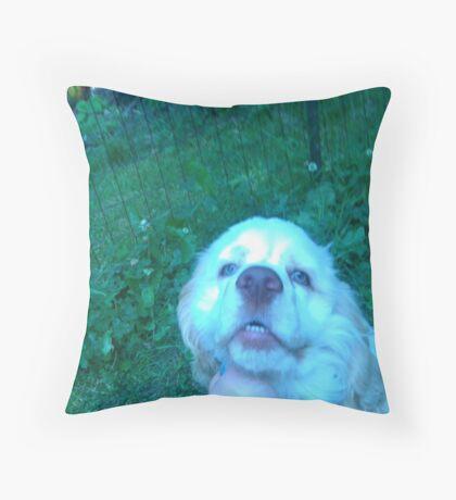 Duncan the Cocker Spaniel Throw Pillow