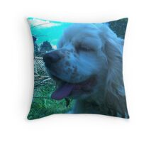 Duncan the cocker spaniel puppy Throw Pillow