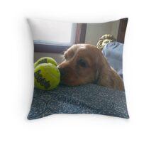Cocker Spaniel Charlie and his balls Throw Pillow