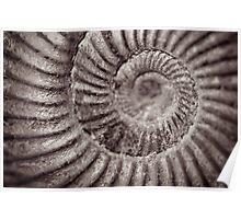 Archimedean spiral Poster