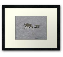 Enchatment Lake Framed Print