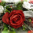 Christmas Rose by Poete100