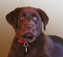 Duffy portrait by HayleyJS
