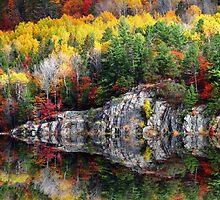 Fall along the river by Janet Gosselin