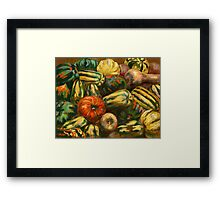 Still life with colorful pumpkins Framed Print