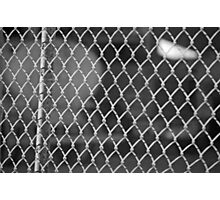Chain Link Photographic Print