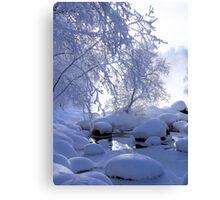 Winter fog Canvas Print