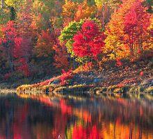 The Beauty of Fall by Janet Gosselin