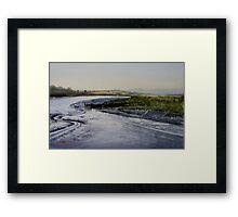 Tidal Life - Tamar Island Framed Print