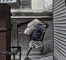 Heavy load.. by John Callaway