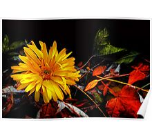 Twilight in an Autumn Garden Poster