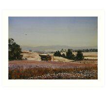 Papaver Harvest Art Print