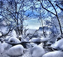 Winter wonderland by Kari Liimatainen