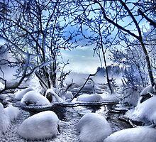 Winter wonderland by Kari Liimatainen