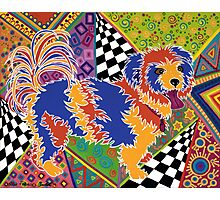 POP ART DOG - Doggie portrait with a difference! Photographic Print