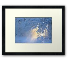 Door to another world  Framed Print