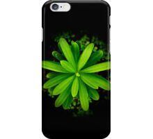 new life - case iPhone Case/Skin