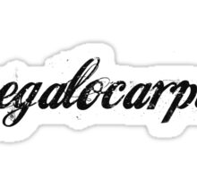 Megalocarpus In Black Text Sticker