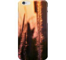 Sunset - case iPhone Case/Skin