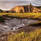Uphill Pill - Somerset, England by Robert Down