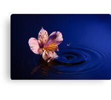 Flower and Water Canvas Print