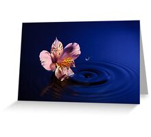 Flower and Water Greeting Card