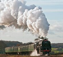 Mid-Hants Railway by Steve  Liptrot
