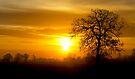 A Norfolk Sunrise by Darren Burroughs