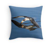 Immature Black Skimmer Skimming For Fish Throw Pillow