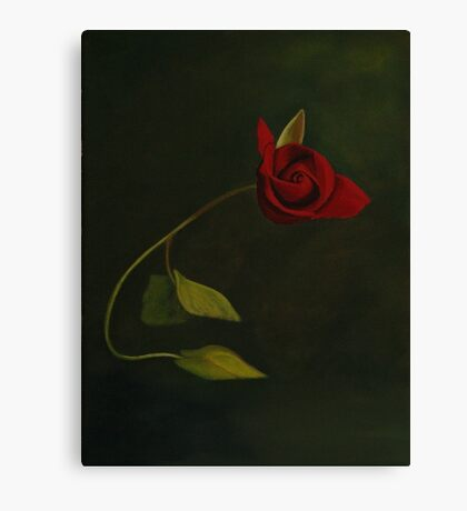 For Valentines Canvas Print