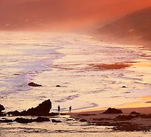 Summer light - Aireys Inlet by Hans Kawitzki