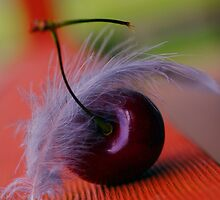 a feather landed on my cherry by Clare Colins