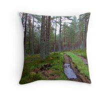 Altyre Woods, near Forres, Scotland Throw Pillow