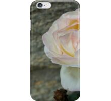 Fall Rose iPhone Case/Skin