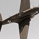 Warhawk on the Warpath! by gfydad