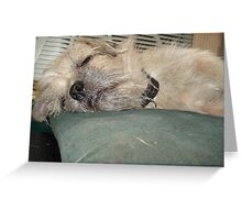 NO TEARS ON THIS PILLOW! Greeting Card