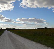 Country road. by Deidra Scoggins