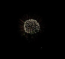WHITE HEADED DANDY FLOWER FIREWORKS by JAYMILO