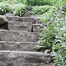 Stairs in the Garden by Bami