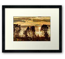 A Golden Multitude Framed Print