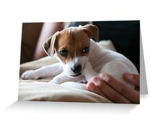 Cuteness R me Greeting Card