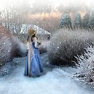 Winter by Þórdis B.