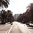 Barcelona by Bimal Tailor