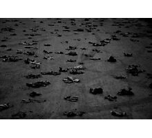 Autumn leaves on the ground Photographic Print