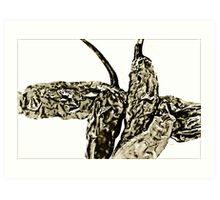 Crumpled Chili Art Print
